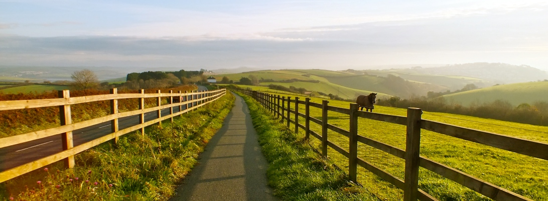 A morning view of the cycle track between Malborough and Salcombe in Devon.