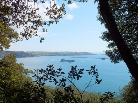 View from the Amphitheatre Woods, Mount Edgcumbe, Cornwall. Near Plymouth.