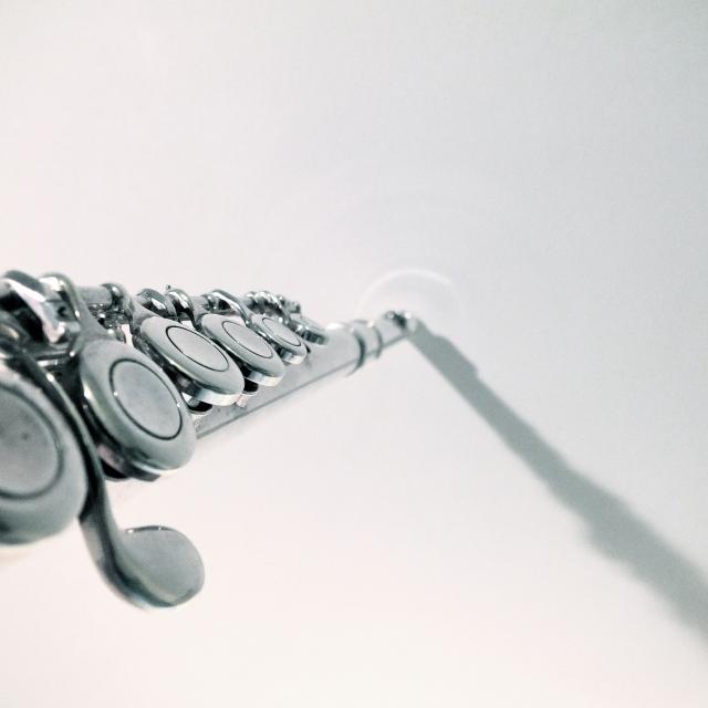 photograph of flute keys