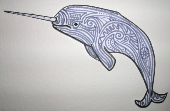 Swirling Narwhal illustration by Hannah Sterry