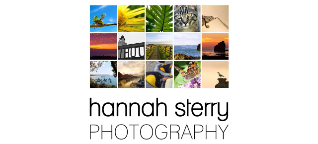 Hannah Sterry Photography Web Banner on hannahsterry.com.
