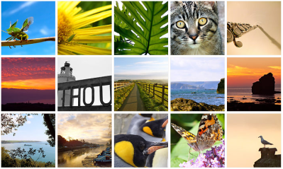 Buy Hannah Sterry Photography Local South Hams South West Devon Salcombe Malborough Thurlestone Start Point Photos Photography Wall Art Gifts Prints Postcards Photos Nature Shots Wildlife Malborough Hope Cove