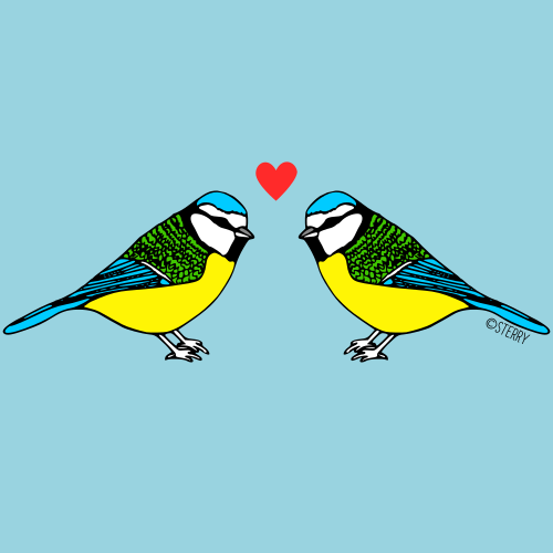 Bluetits in Love - Illustration by Hannah Sterry